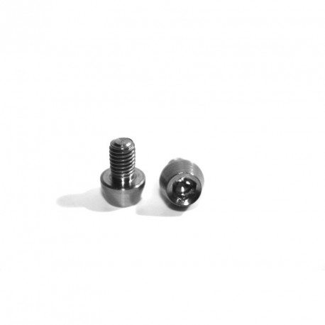 Titanium bolts for Ciamillo brakes cams