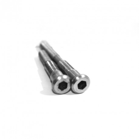 One set of 2 titanium centerbolts